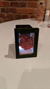 Finished product: Wooden picture frame with a succulent inside and a light activated by switch.